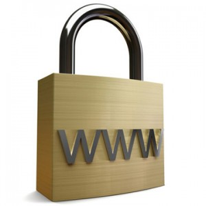 web security 300x300 Internet Defense Technology : Web Proxy / Content Filter / Application Firewalls