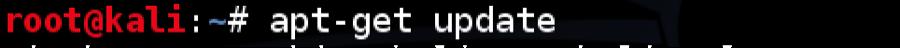 Kali_install_18