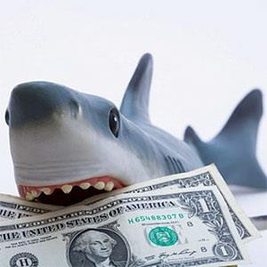shark Dont Just Click Any Link   Avoiding Phishing, Social Engineering And Other Attacks