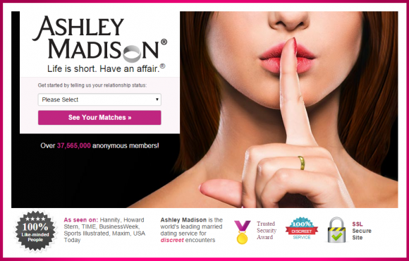 ashley madison blogger